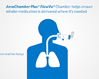 AeroChamber Plus* Flow-Vu*